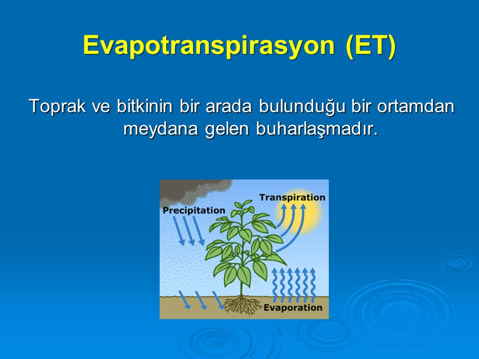 Bitki su tüketimi (Evapotranspirasyon)   Bitki su tüketimi : Toprak yüzeyinden olan buharlaşma (evaporasyon) + Bitki yapraklarından olan terleme (transpirasyon)   Kısa periyotlu bitki su tüketimi : Günlük, haftalık, on günlük   Uzun periyotlu su tüketimi : Aylık, mevsimlik