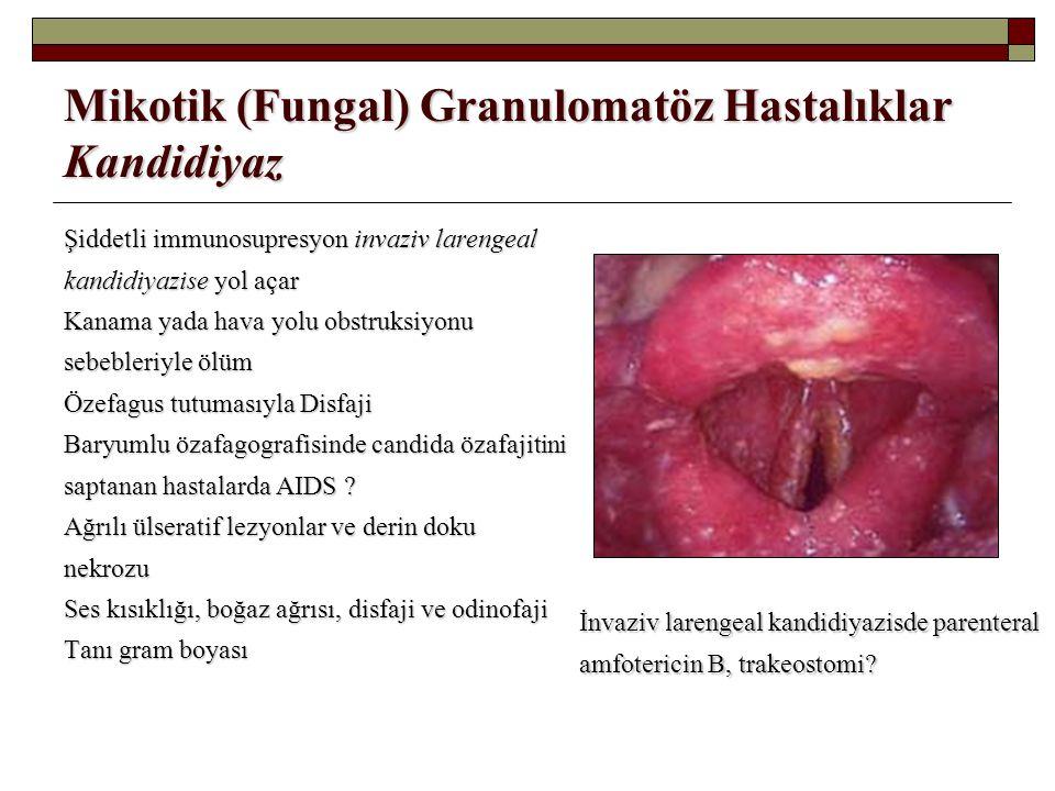 Mikotik (Fungal) Granulomatöz Hastalıklar Kandidiyaz Şiddetli immunosupresyon invaziv larengeal kandidiyazise yol açar Kanama yada hava yolu obstruksi