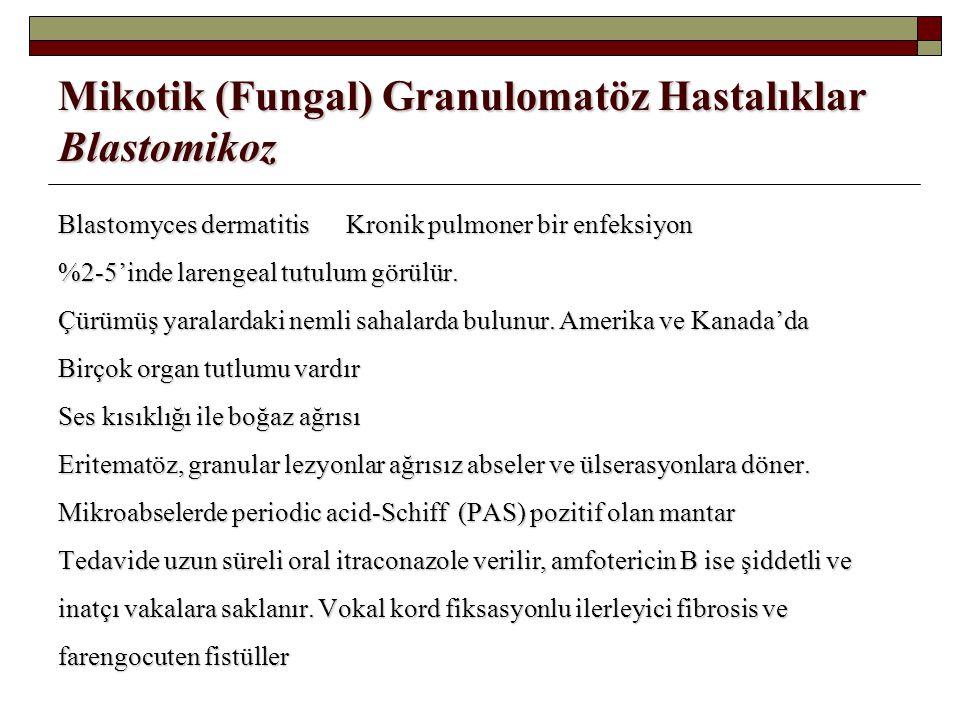 Mikotik (Fungal) Granulomatöz Hastalıklar Blastomikoz Blastomyces dermatitis Kronik pulmoner bir enfeksiyon %2-5'inde larengeal tutulum görülür. Çürüm