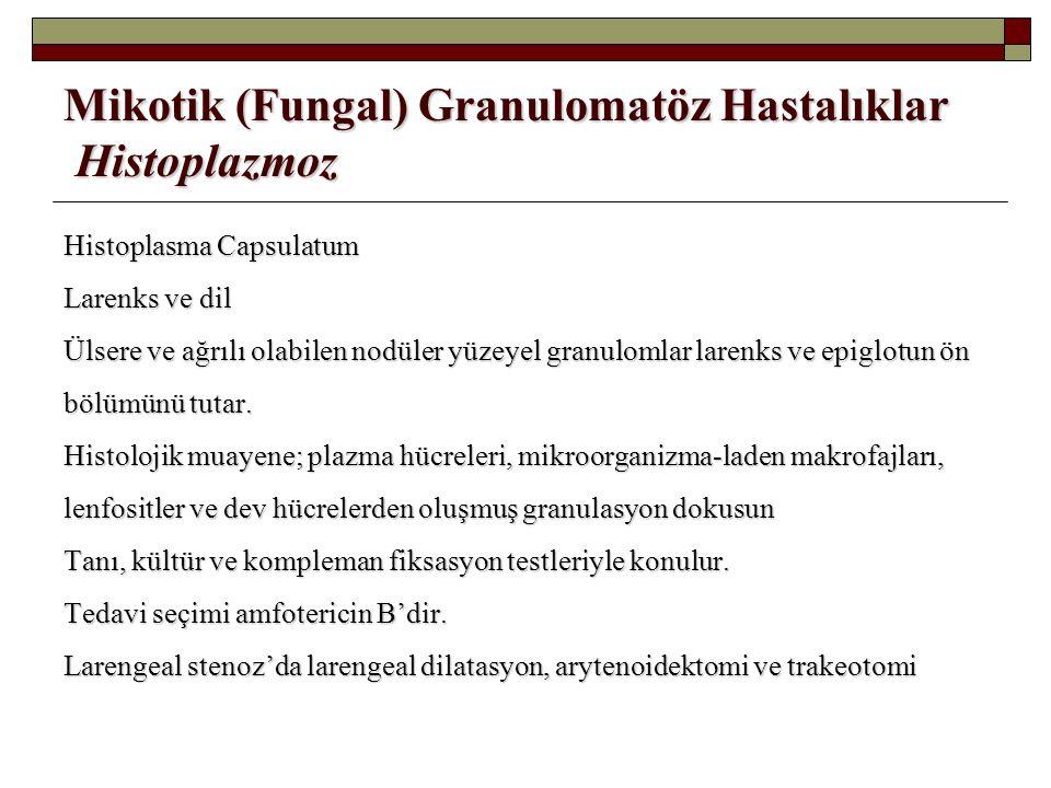 Mikotik (Fungal) Granulomatöz Hastalıklar Histoplazmoz Histoplasma Capsulatum Larenks ve dil Ülsere ve ağrılı olabilen nodüler yüzeyel granulomlar lar
