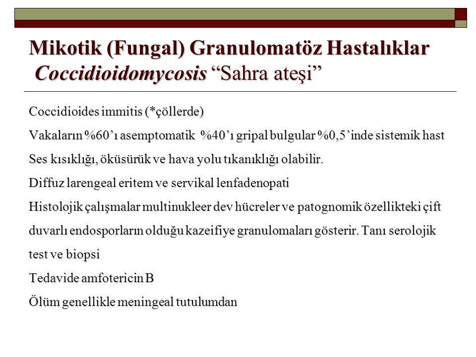 """Mikotik (Fungal) Granulomatöz Hastalıklar Coccidioidomycosis """"Sahra ateşi"""" Coccidioides immitis (*çöllerde) Vakaların %60'ı asemptomatik %40'ı gripal"""