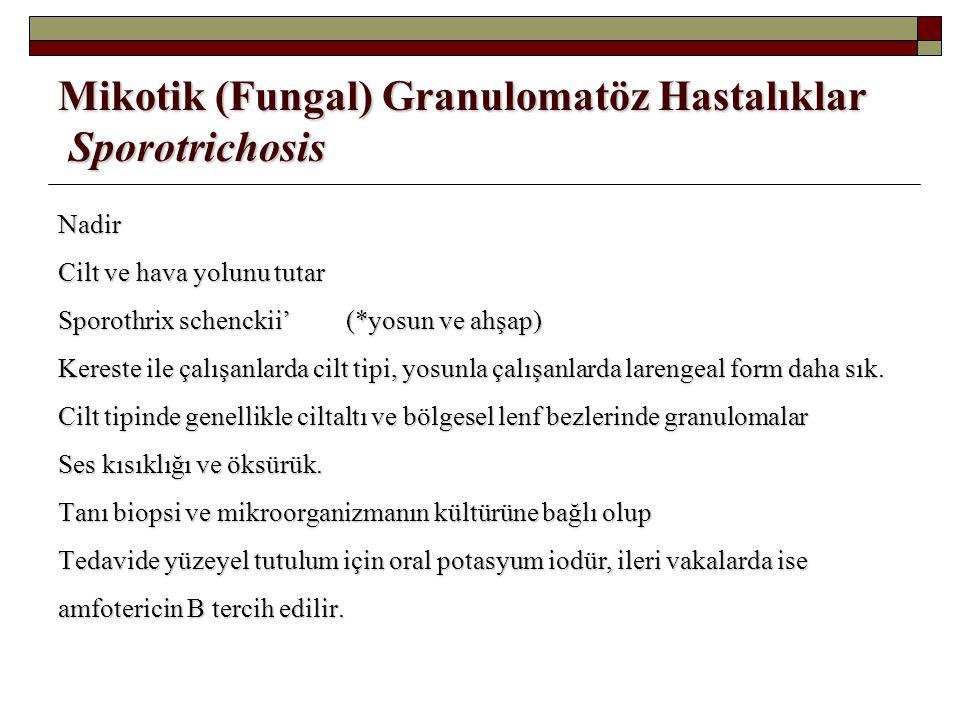 Mikotik (Fungal) Granulomatöz Hastalıklar Sporotrichosis Nadir Cilt ve hava yolunu tutar Sporothrix schenckii'(*yosun ve ahşap) Kereste ile çalışanlar