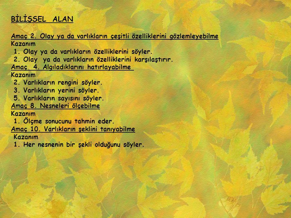 BİLİŞSEL ALAN Amaç 11.
