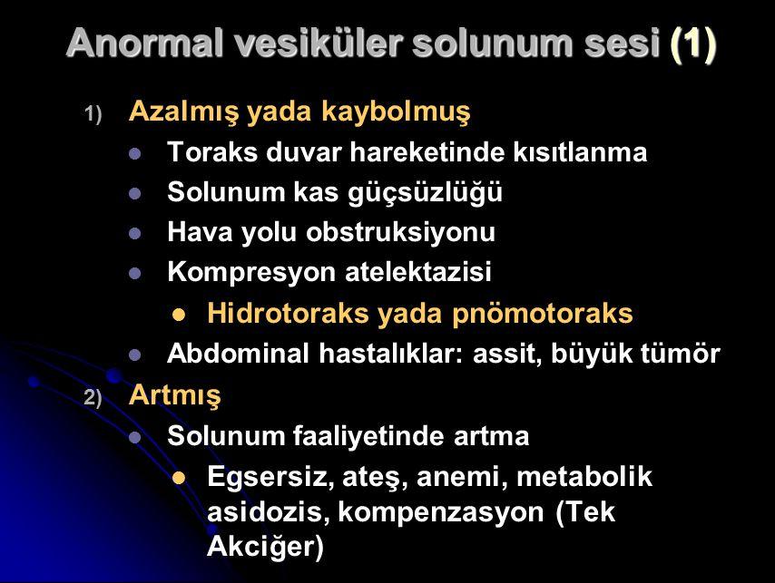 Anormal vesiküler solunum sesi (1) 1) 1) Azalmış yada kaybolmuş Toraks duvar hareketinde kısıtlanma Solunum kas güçsüzlüğü Hava yolu obstruksiyonu Kompresyon atelektazisi Hidrotoraks yada pnömotoraks Abdominal hastalıklar: assit, büyük tümör 2) 2) Artmış Solunum faaliyetinde artma Egsersiz, ateş, anemi, metabolik asidozis, kompenzasyon (Tek Akciğer)
