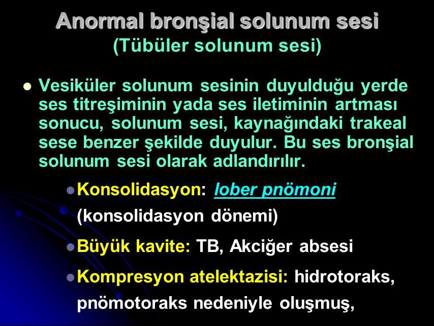 Anormal bronşial solunum sesi Anormal bronşial solunum sesi (Tübüler solunum sesi) Vesiküler solunum sesinin duyulduğu yerde ses titreşiminin yada ses iletiminin artması sonucu, solunum sesi, kaynağındaki trakeal sese benzer şekilde duyulur.