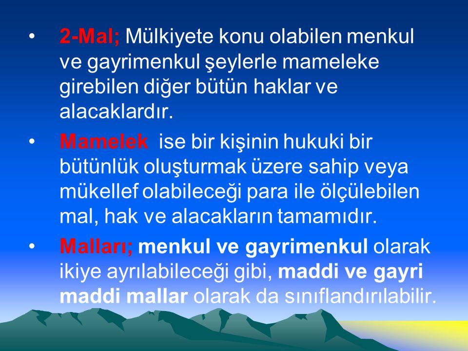 2-Mal; Mülkiyete konu olabilen menkul ve gayrimenkul şeylerle mameleke girebilen diğer bütün haklar ve alacaklardır.
