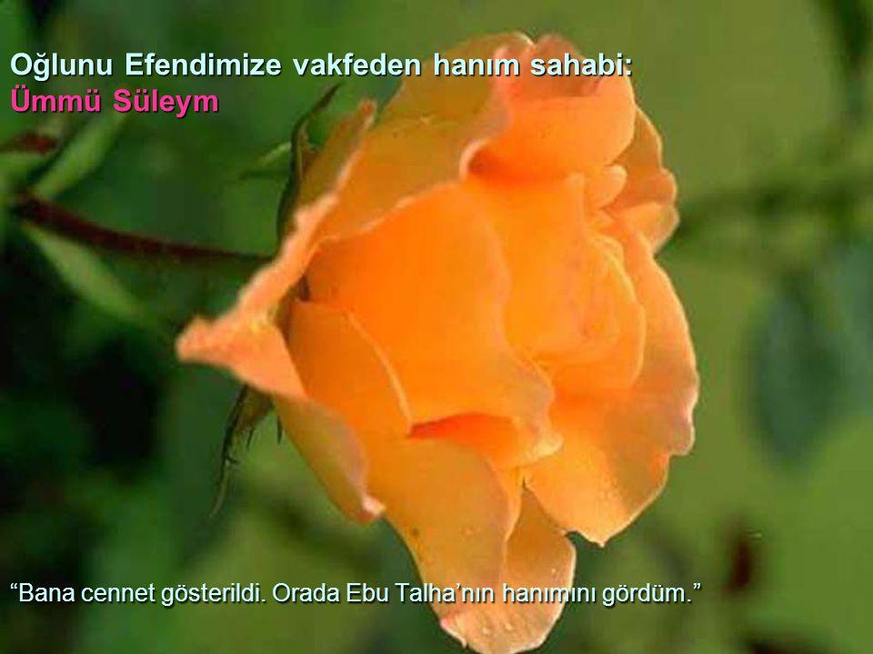 """Oğlunu Efendimize vakfeden hanım sahabi: Ümmü Süleym """"Bana cennet gösterildi. Orada Ebu Talha'nın hanımını gördüm."""""""