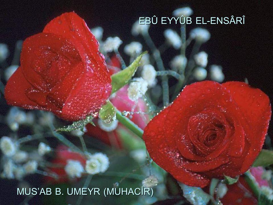 EBÛ EYYÛB EL-ENSÂRÎ MUS'AB B. UMEYR (MUHACİR) EBÛ EYYÛB EL-ENSÂRÎ MUS'AB B. UMEYR (MUHACİR)