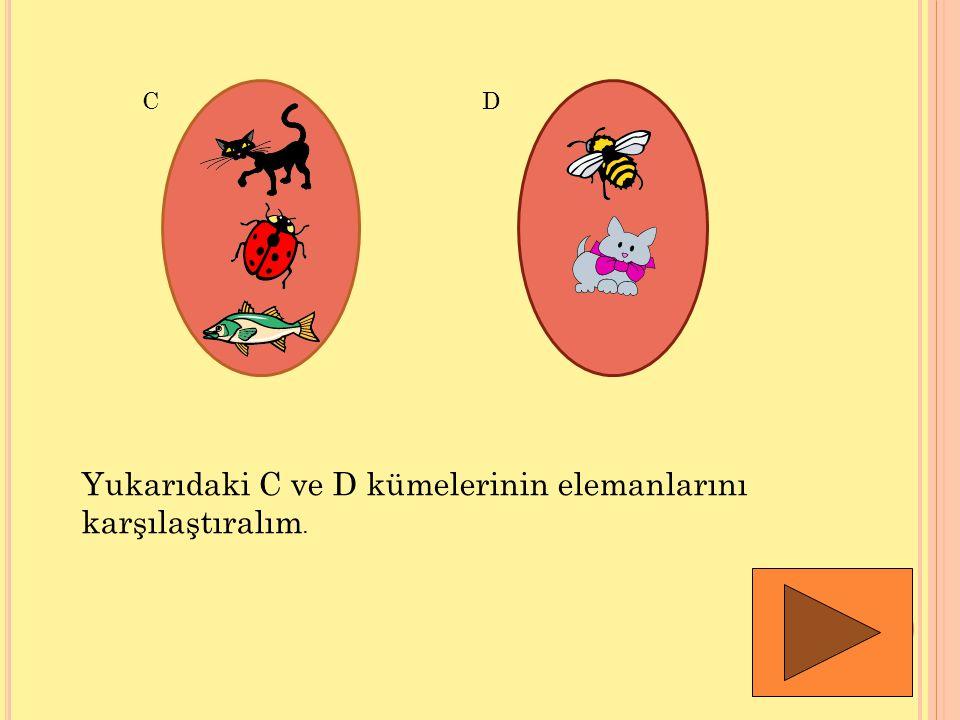 CD Yukarıdaki C ve D kümelerinin elemanlarını karşılaştıralım.