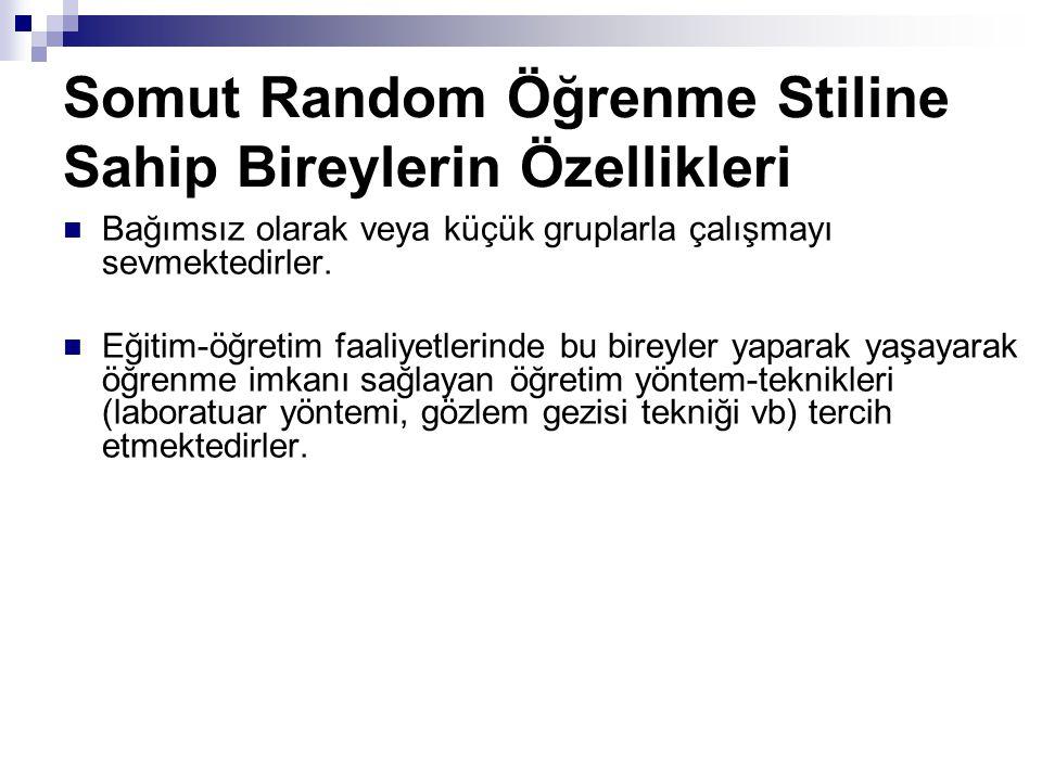 Somut Random Öğrenme Stiline Sahip Bireylerin Özellikleri Bağımsız olarak veya küçük gruplarla çalışmayı sevmektedirler.