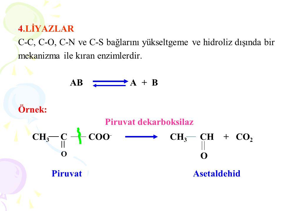 4.LİYAZLAR C-C, C-O, C-N ve C-S bağlarını yükseltgeme ve hidroliz dışında bir mekanizma ile kıran enzimlerdir. AB A + B Örnek: CH 3 C COO - CH 3 CH +