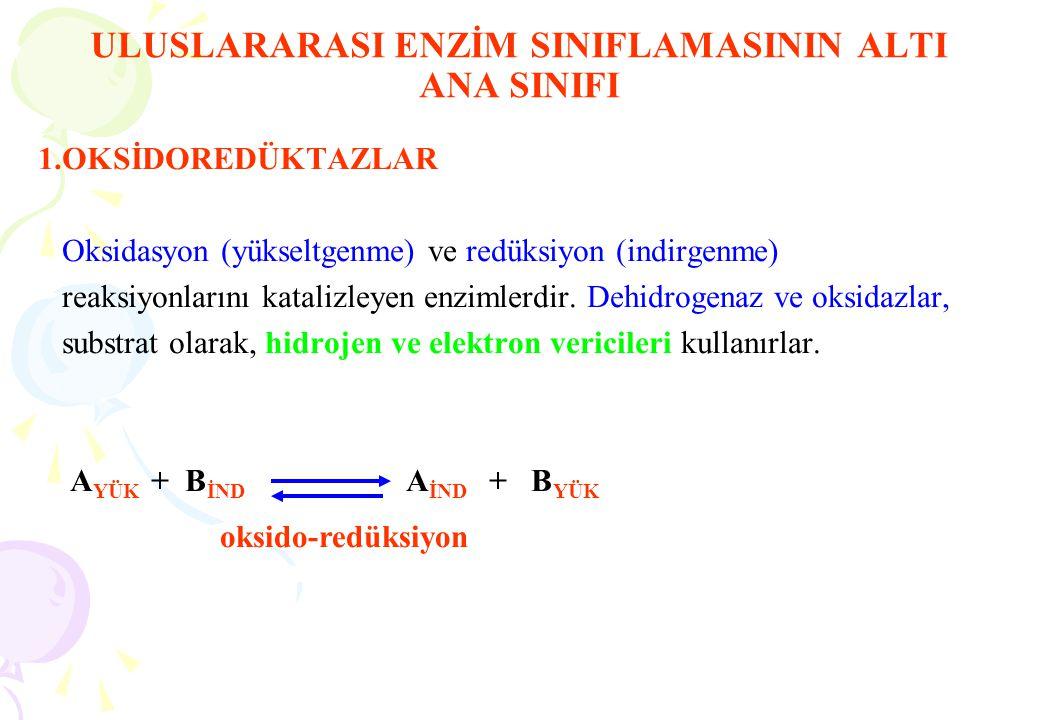 ULUSLARARASI ENZİM SINIFLAMASININ ALTI ANA SINIFI 1.OKSİDOREDÜKTAZLAR Oksidasyon (yükseltgenme) ve redüksiyon (indirgenme) reaksiyonlarını katalizleye