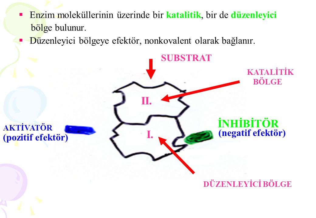  Enzim moleküllerinin üzerinde bir katalitik, bir de düzenleyici bölge bulunur.  Düzenleyici bölgeye efektör, nonkovalent olarak bağlanır. SUBSTRAT