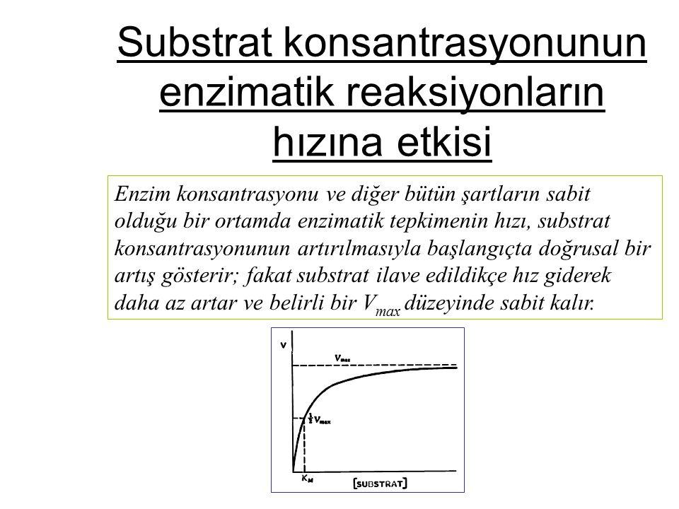 Substrat konsantrasyonunun enzimatik reaksiyonların hızına etkisi Enzim konsantrasyonu ve diğer bütün şartların sabit olduğu bir ortamda enzimatik tep