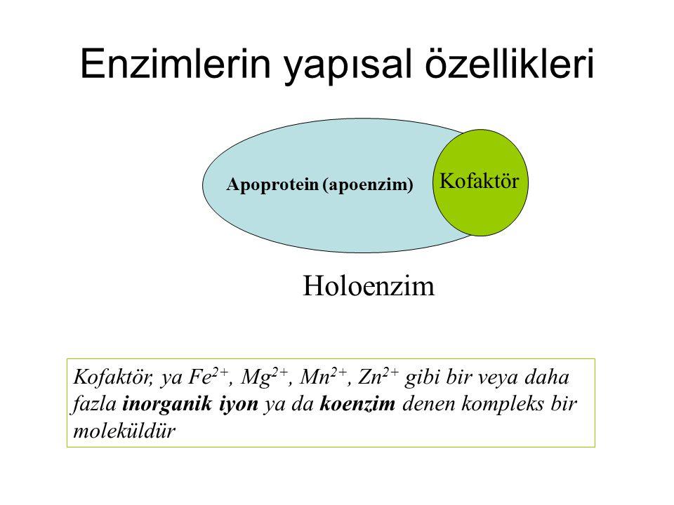 Enzimlerin adlandırılmaları Birçok enzim, substratlarının adına veya aktivitelerini tanımlayan bir kelime veya sözcük grubuna az soneki ekleyerek adlandırılır.