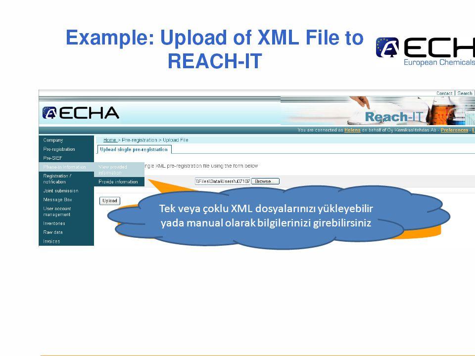 Tek veya çoklu XML dosyalarınızı yükleyebilir yada manual olarak bilgilerinizi girebilirsiniz