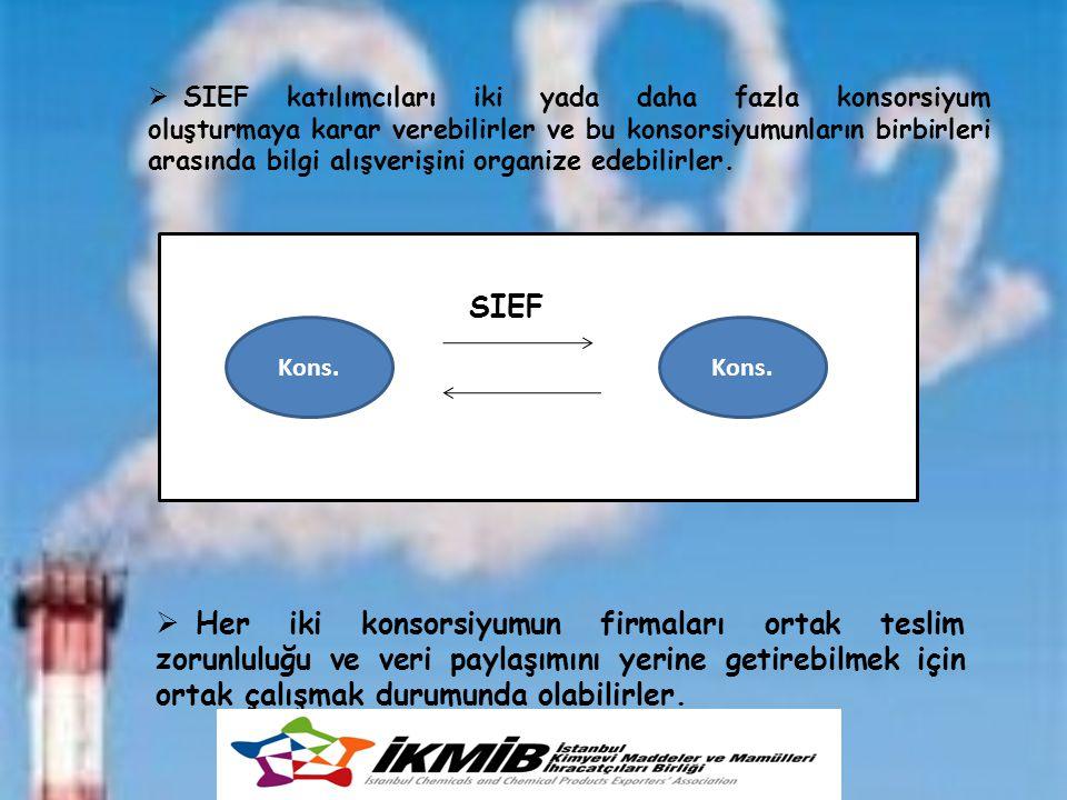 Kons. SIEF  SIEF katılımcıları iki yada daha fazla konsorsiyum oluşturmaya karar verebilirler ve bu konsorsiyumunların birbirleri arasında bilgi alış