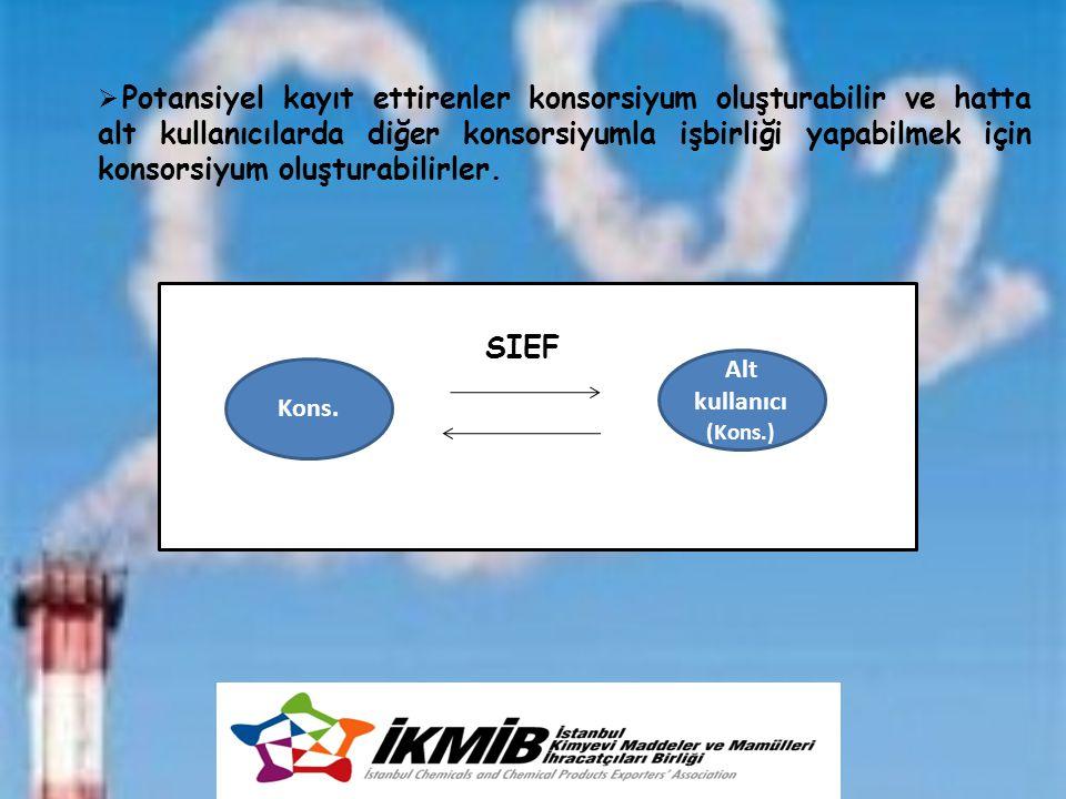 Kons. Alt kullanıcı (Kons.) SIEF  Potansiyel kayıt ettirenler konsorsiyum oluşturabilir ve hatta alt kullanıcılarda diğer konsorsiyumla işbirliği yap