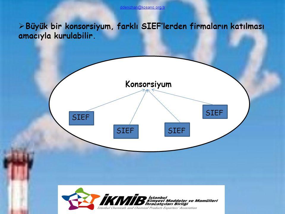 Konsorsiyum  Büyük bir konsorsiyum, farklı SIEF'lerden firmaların katılması amacıyla kurulabilir. ddenizhan@kosano.org.tr SIEF