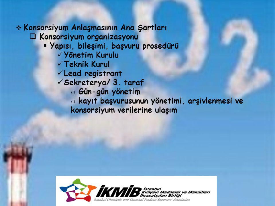  Konsorsiyum Anlaşmasının Ana Şartları  Konsorsiyum organizasyonu  Yapısı, bileşimi, başvuru prosedürü Yönetim Kurulu Teknik Kurul Lead registrant