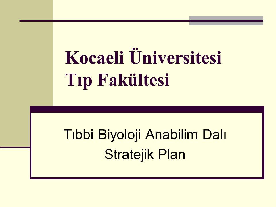 Stratejik amaç 5.
