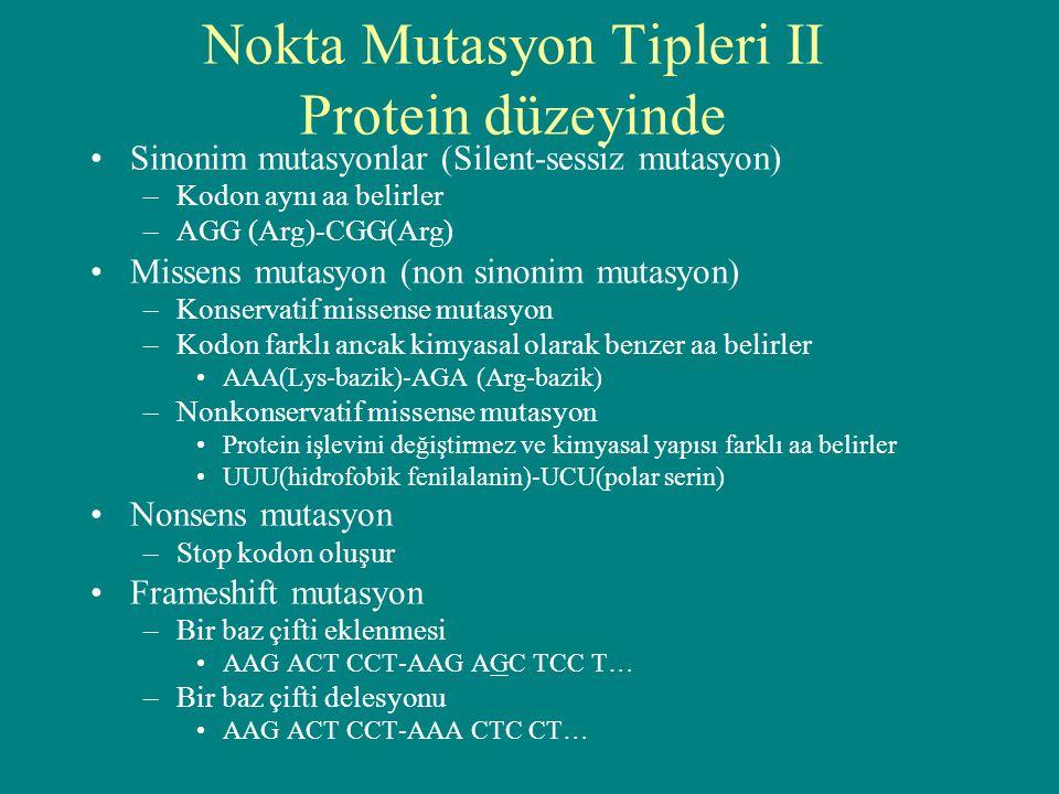 Nokta Mutasyon Tipleri II Protein düzeyinde Sinonim mutasyonlar (Silent-sessiz mutasyon) –Kodon aynı aa belirler –AGG (Arg)-CGG(Arg) Missens mutasyon
