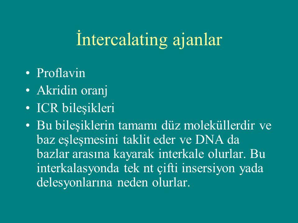 İntercalating ajanlar Proflavin Akridin oranj ICR bileşikleri Bu bileşiklerin tamamı düz moleküllerdir ve baz eşleşmesini taklit eder ve DNA da bazlar