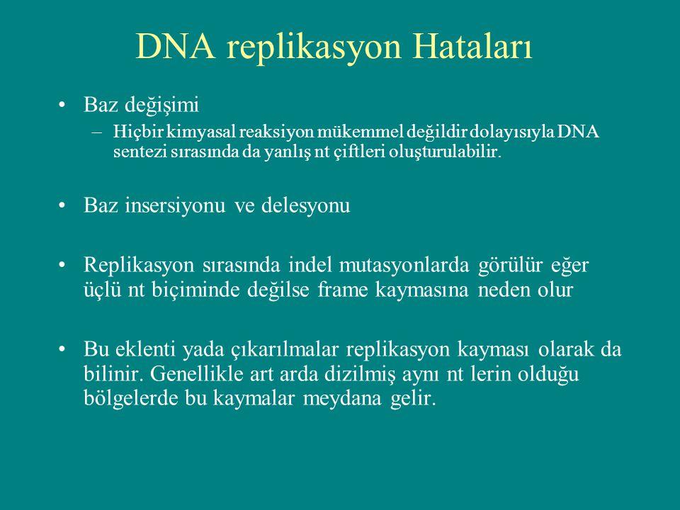 DNA replikasyon Hataları Baz değişimi –Hiçbir kimyasal reaksiyon mükemmel değildir dolayısıyla DNA sentezi sırasında da yanlış nt çiftleri oluşturulab