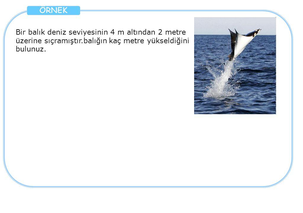 Bir balık deniz seviyesinin 4 m altından 2 metre üzerine sıçramıştır.balığın kaç metre yükseldiğini bulunuz.