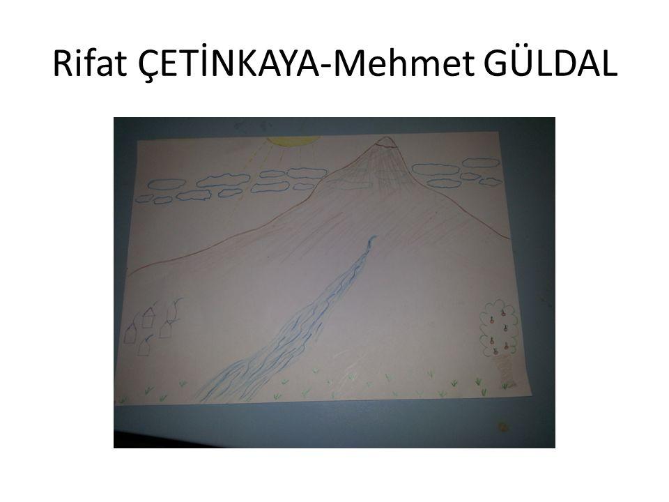 Rifat ÇETİNKAYA-Mehmet GÜLDAL