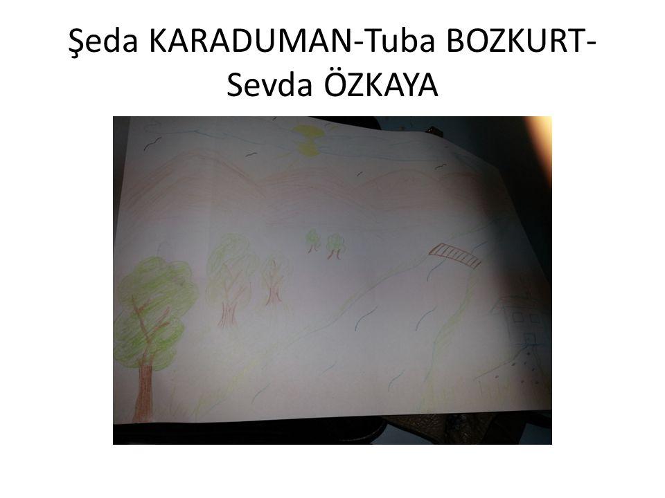 Şeda KARADUMAN-Tuba BOZKURT- Sevda ÖZKAYA