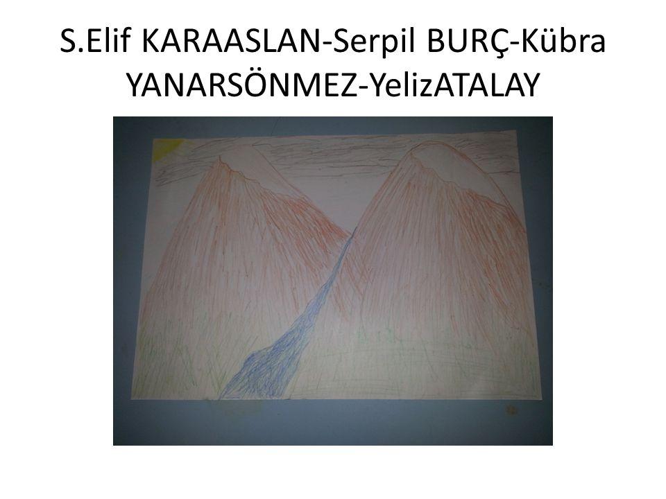 Seda KAYA-Nursel SARIBAŞ-İlknur GÖMLEKSİZOĞLU-Sadife KALAYCI