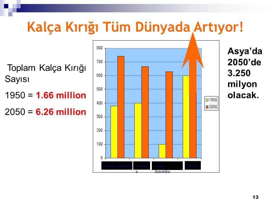 13 Kalça Kırığı Tüm Dünyada Artıyor! Toplam Kalça Kırığı Sayısı 1950 = 1.66 million 2050 = 6.26 million Asya'da 2050'de 3.250 milyon olacak. Kuzey Ame