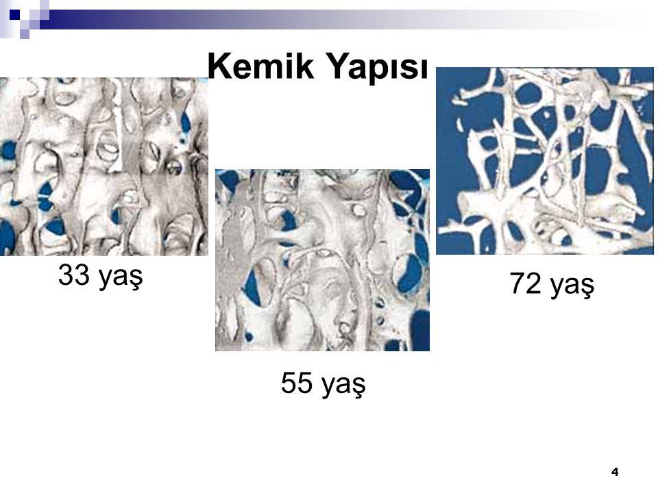 5 Kemik dinamik bir dokudur, devamlı yıkılır ve yeniden yapılır, yapımla yıkım arasındaki denge yıkım lehine artarsa kemik kaybedilir ve kemik kütlesi azalır.