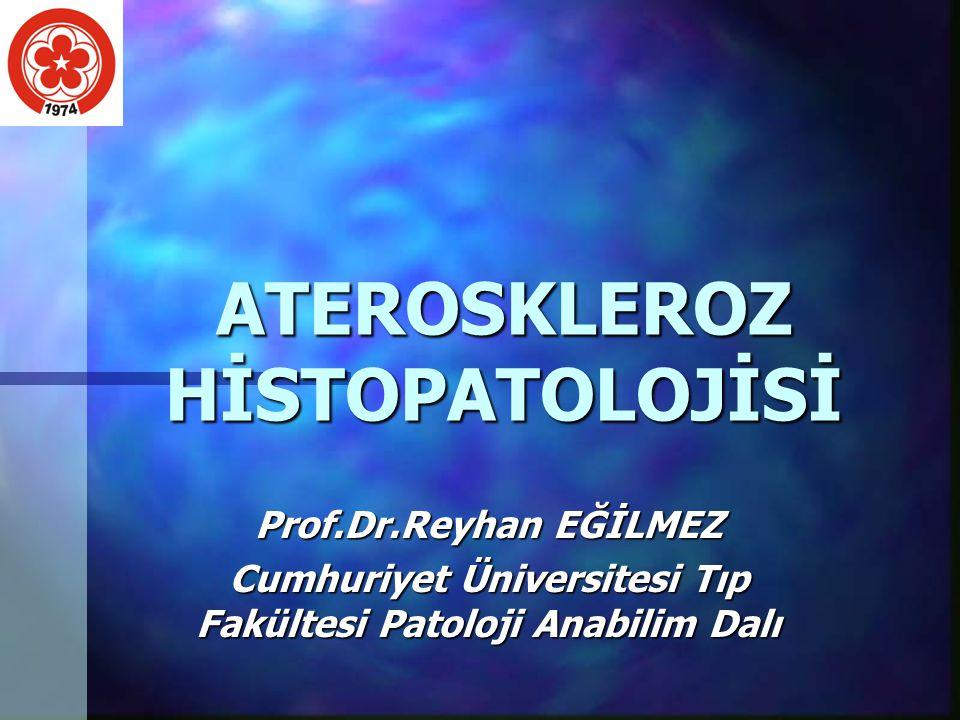 ATEROSKLEROZ HİSTOPATOLOJİSİ Prof.Dr.Reyhan EĞİLMEZ Cumhuriyet Üniversitesi Tıp Fakültesi Patoloji Anabilim Dalı