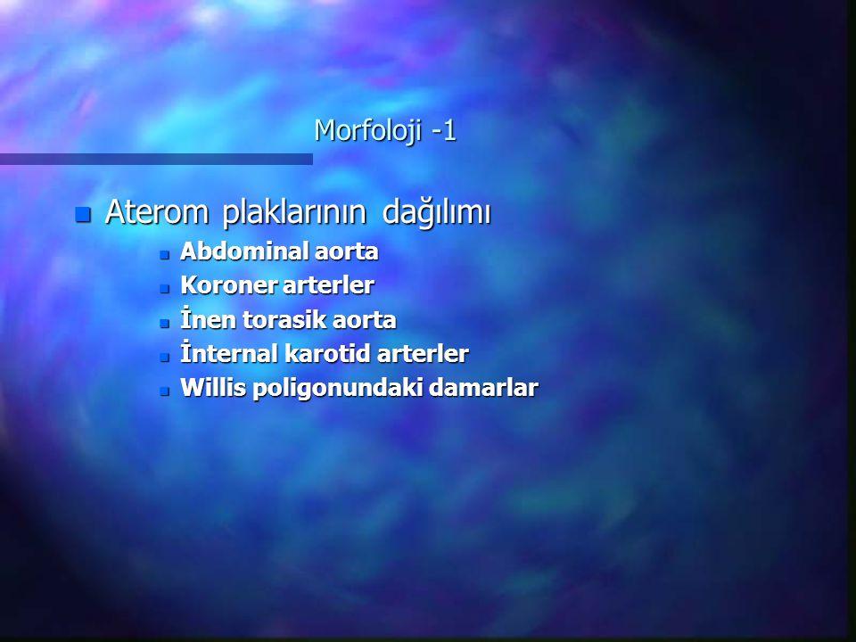 Morfoloji -1 n Aterom plaklarının dağılımı n Abdominal aorta n Koroner arterler n İnen torasik aorta n İnternal karotid arterler n Willis poligonundaki damarlar