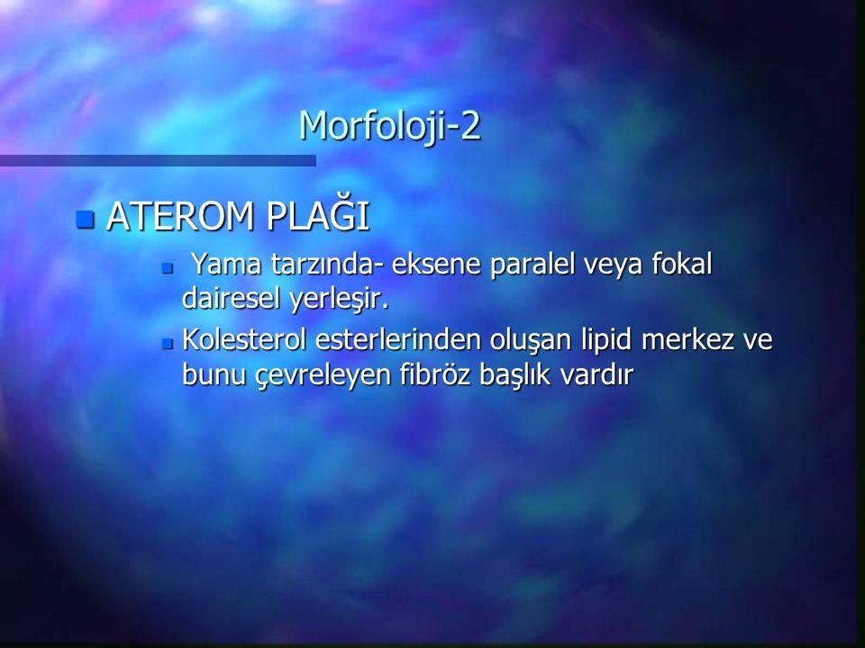 Morfoloji-2 n ATEROM PLAĞI n Yama tarzında- eksene paralel veya fokal dairesel yerleşir. n Kolesterol esterlerinden oluşan lipid merkez ve bunu çevrel