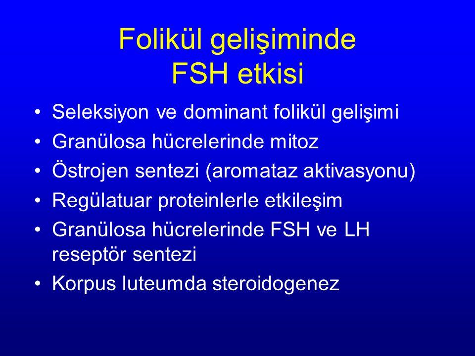 Folikül gelişiminde FSH etkisi Seleksiyon ve dominant folikül gelişimi Granülosa hücrelerinde mitoz Östrojen sentezi (aromataz aktivasyonu) Regülatuar proteinlerle etkileşim Granülosa hücrelerinde FSH ve LH reseptör sentezi Korpus luteumda steroidogenez