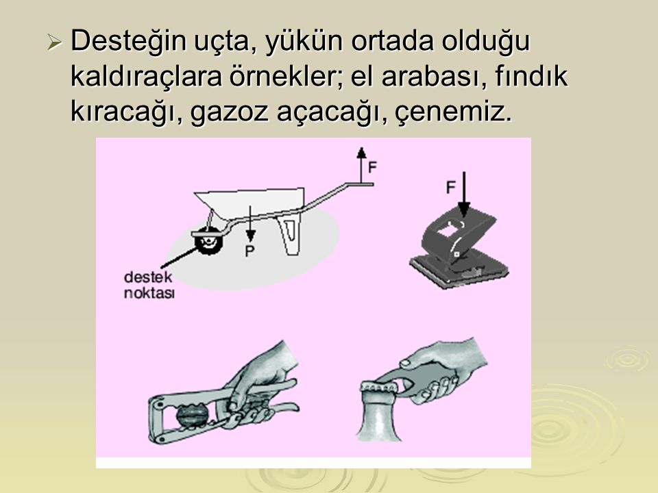  Desteğin uçta, yükün ortada olduğu kaldıraçlara örnekler; el arabası, fındık kıracağı, gazoz açacağı, çenemiz.