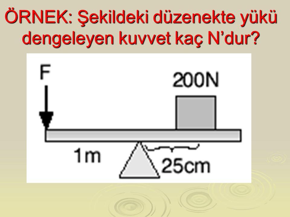 ÖRNEK: Şekildeki düzenekte yükü dengeleyen kuvvet kaç N'dur?
