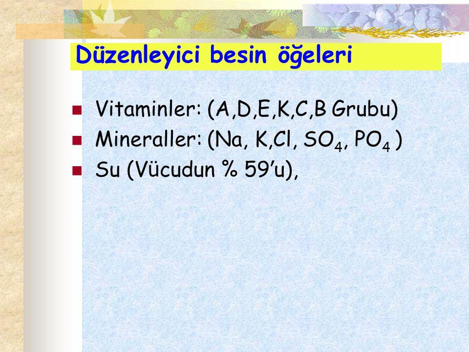 Düzenleyici besin öğeleri Vitaminler: (A,D,E,K,C,B Grubu) Mineraller: (Na, K,Cl, SO 4, PO 4 ) Su (V ü cudun % 59 ' u),