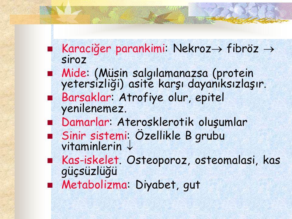 Karaciğer parankimi: Nekroz  fibröz  siroz Mide: (Müsin salgılamanazsa (protein yetersizliği) asite karşı dayanıksızlaşır. Barsaklar: Atrofiye olur,