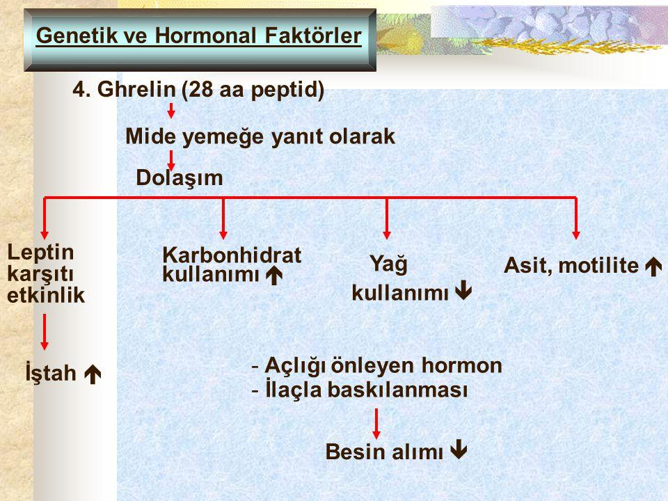 Genetik ve Hormonal Faktörler 4. Ghrelin (28 aa peptid) Mide yemeğe yanıt olarak Dolaşım Karbonhidrat kullanımı  Leptin karşıtı etkinlik İştah  Yağ