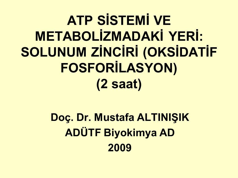 ATP SİSTEMİ VE METABOLİZMADAKİ YERİ: SOLUNUM ZİNCİRİ (OKSİDATİF FOSFORİLASYON) (2 saat) Doç. Dr. Mustafa ALTINIŞIK ADÜTF Biyokimya AD 2009