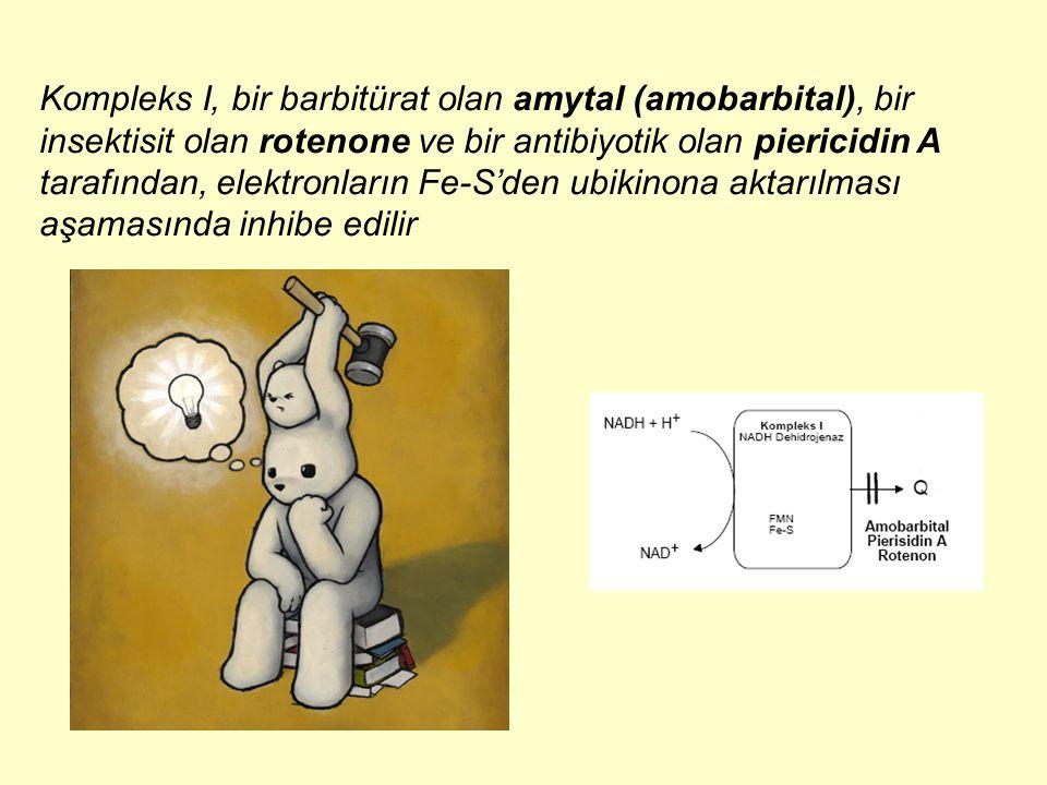Kompleks I, bir barbitürat olan amytal (amobarbital), bir insektisit olan rotenone ve bir antibiyotik olan piericidin A tarafından, elektronların Fe-S