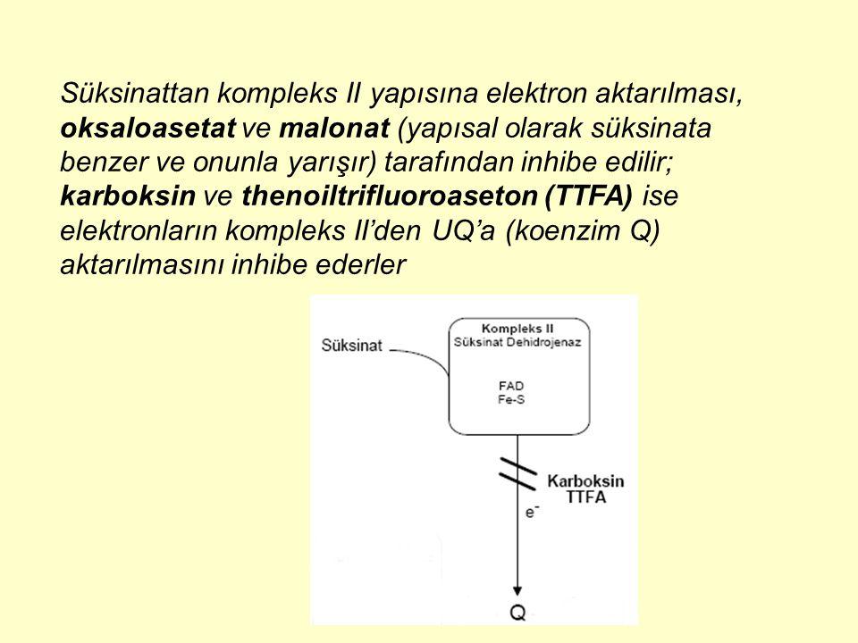 Süksinattan kompleks II yapısına elektron aktarılması, oksaloasetat ve malonat (yapısal olarak süksinata benzer ve onunla yarışır) tarafından inhibe e