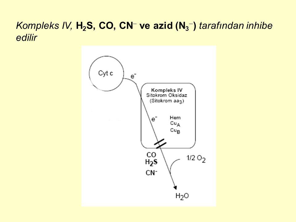 Kompleks IV, H 2 S, CO, CN  ve azid (N 3  ) tarafından inhibe edilir