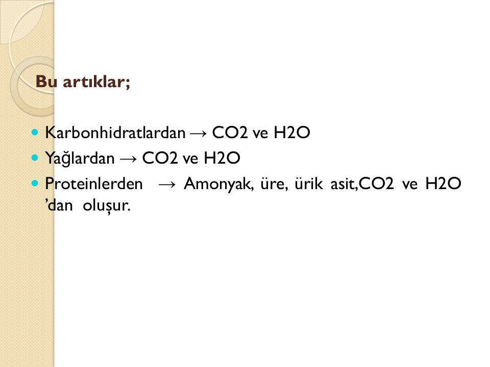 Bu artıklar; Karbonhidratlardan → CO2 ve H2O Ya ğ lardan → CO2 ve H2O Proteinlerden → Amonyak, üre, ürik asit,CO2 ve H2O 'dan oluşur.