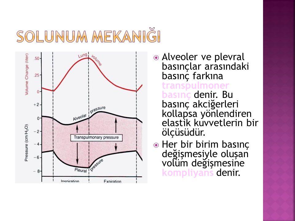  Alveoler ve plevral basınçlar arasındaki basınç farkına transpulmoner basınç denir. Bu basınç akciğerleri kollapsa yönlendiren elastik kuvvetlerin b