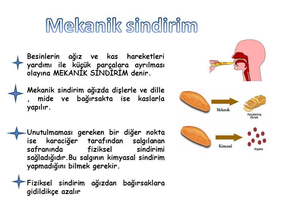 Besinlerin sindirim sıvılarında enzim adı verilen salgılar yardımı ile küçük parçalara ayrılması işlemine KİMYASAL SİNDİRİM denir.